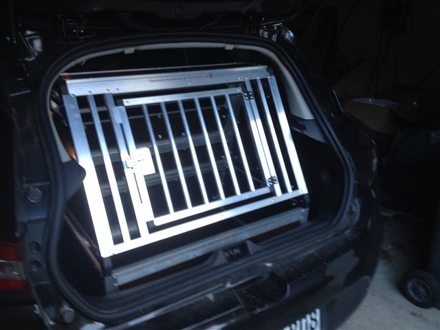 Hundetransportbox für Renault Clio