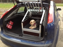 Hundetransportbox Ford Focus Limousine