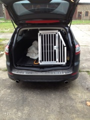 Hundetransportbox für Ford