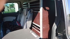 Ford Tourneo Hundetransportbox Auto