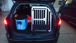 Hundebox Auto Ford Focus Turnier