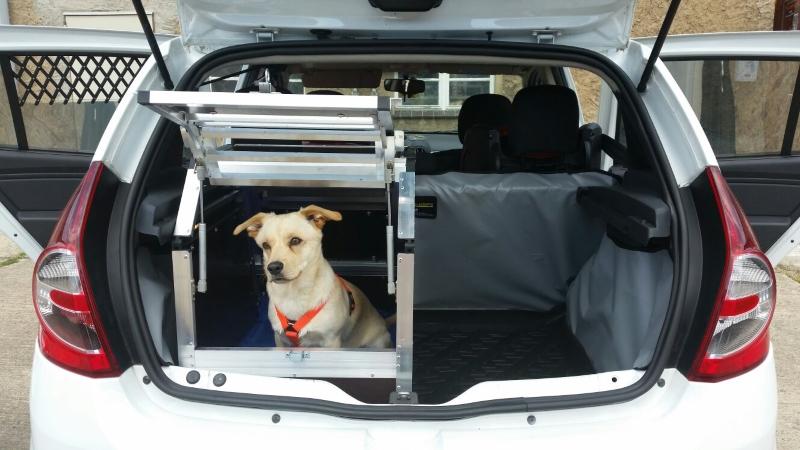 Hundebox Fur Dacia Sandero Hundetransportbox