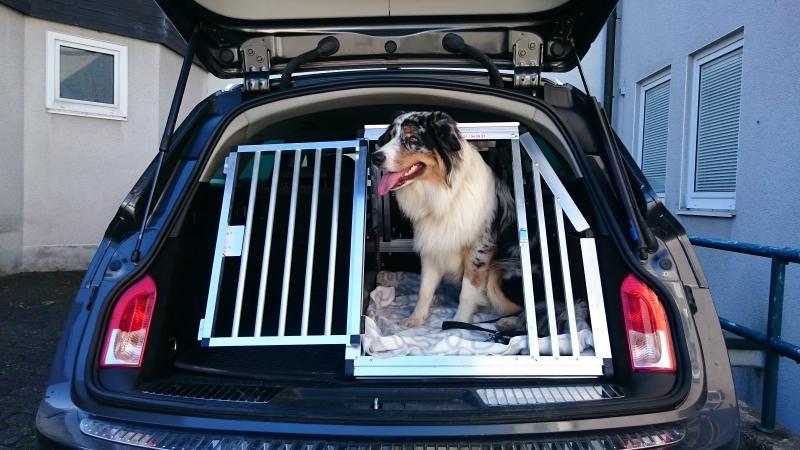 hundeboxen f r opel faustmann hundeboxen. Black Bedroom Furniture Sets. Home Design Ideas