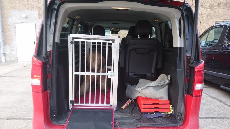 hundeboxen f r mercedes faustmann hundeboxen. Black Bedroom Furniture Sets. Home Design Ideas
