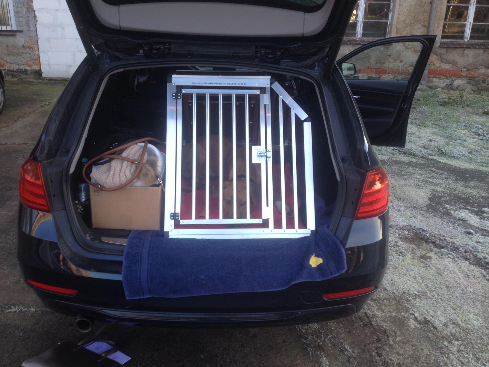 hundeboxen f r bmw faustmann hundeboxen. Black Bedroom Furniture Sets. Home Design Ideas