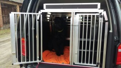 Hundetransportbox mit Ablage