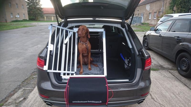 hundeboxen f r audi faustmann hundeboxen. Black Bedroom Furniture Sets. Home Design Ideas