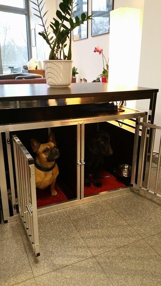 hundeboxen stubenboxen faustmann hundeboxen. Black Bedroom Furniture Sets. Home Design Ideas